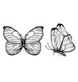 hand drawn butterflies with vector image vector image