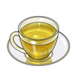 hand drawn glass cup mug of green tea drink vector image vector image