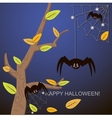 Spiders in the web tree vector image