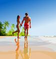 happy couple on the tropical seashore vector image