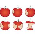 apple being eaten vector image