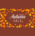 autumn lettering sale banner september or october vector image