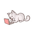 cartoon cat sitting with laptop at knees vector image vector image