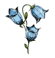 Colorful Bell flower sketch vector image