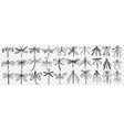 dragonfly hand drawn doodle set vector image