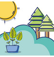 linear pine trees with leaves tree and sun vector image vector image