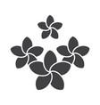 spa salon plumeria flowers glyph icon vector image vector image