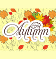 autumn bright background with yellow leaves and vector image vector image