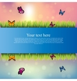 banner with grass and flowers vector image vector image