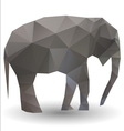 elephant calf vector image