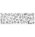microorganisms bacteria hand drawn doodle set vector image