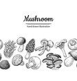 mushroom drawing seamless border isolated vector image vector image