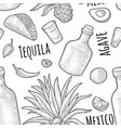 seamless pattern bottle glass tequila salt vector image vector image