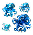 set of stages of growth of animated octopus vector image