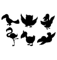 Silhouettes of birds vector image vector image