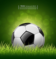 Soccer ball on grass background vector image vector image