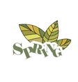 Spring hand drawn and doodles elements vector image vector image