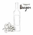 wine vinegar in the bottle outline vector image vector image