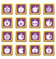 apple logo icons set purple square vector image vector image