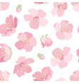 cherry sakura pink blossom floral seamless pattern vector image