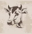 graphic ink drawing sketch head a cow vector image vector image