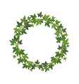 green ivy circle frame wreath fresh leaves vector image vector image