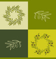 olive branches set vector image vector image