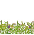 seamless border with greenery vector image vector image