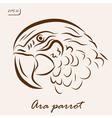 Ara parrot vector image vector image