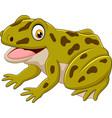 cartoon happy green frog vector image