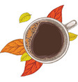 cup coffee and autumn leaves vector image vector image