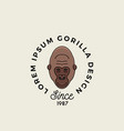 line style gorilla ape or monkey face with retro vector image