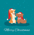 merry christmas funny dogs in red santa hats vector image