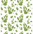 seamless floral greenery leaves patten background vector image