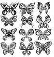 set butterfly in black and white vector image