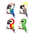 set of different cartoon parrots exotic birds vector image vector image