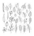 Set of doodle leaves plants for coloring book vector image vector image