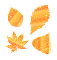 set of realistic golden leaves with sparkle vector image