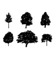 tree collection silhouette vector image vector image