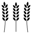 wheat the black color icon vector image