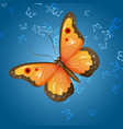beautiful bright multicolored butterfly on vector image vector image