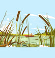 fisherman fishing in pond vector image vector image