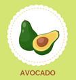 green half opened avocado on white circle vector image
