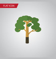 isolated forest flat icon wood element can vector image vector image