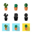 isolated object of cactus and pot sign set of vector image vector image
