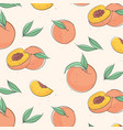 peach macro fruit with leaves tropical nectarine vector image vector image
