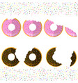sweet glaze pink and brown donuts on sparkles vector image
