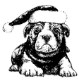 Bulldog with red hat bw vector image vector image