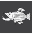 design template of aggressive tropical fish vector image