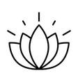 flower lotus nature decoration white background vector image